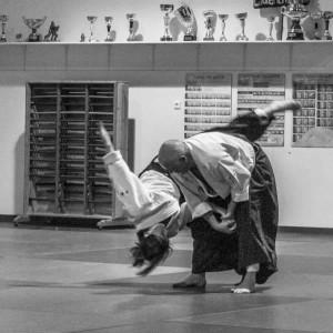 Aikido02